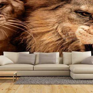 پوستر دیواری حیوانات کد h-11155