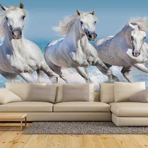 پوستر دیواری حیوانات کد h-11160
