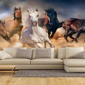 پوستر دیواری حیوانات کد h-11163