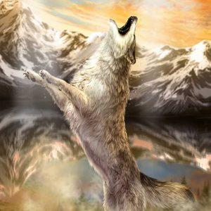 پوستر دیواری حیوانات کد h-11150