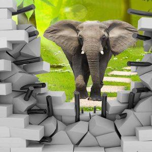 پوستر دیواری حیوانات کد h-11151