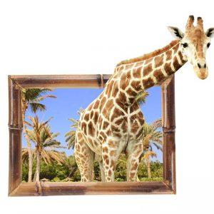 پوستر دیواری حیوانات کد h-11161