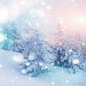 پوستر دیواری منظره زمستان کد n-6944