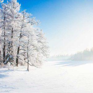 پوستر دیواری منظره زمستان کد n-6946