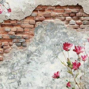پوستر دیواری منظره صخره و دیوار کد n-14558