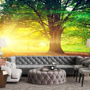 پوستر دیواری منظره تابستان کد n-6263