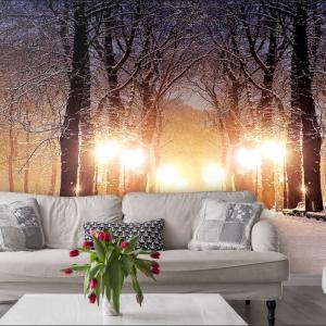پوستر دیواری منظره زمستان کد n-6959
