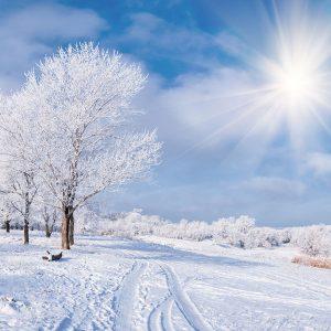 پوستر دیواری منظره زمستان کد n-6907