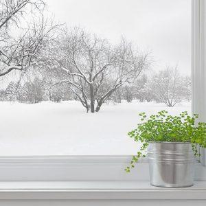 پوستر دیواری منظره زمستان کد n-6929