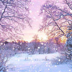 پوستر دیواری منظره زمستان کد mt-83591